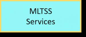 MLTSS Services